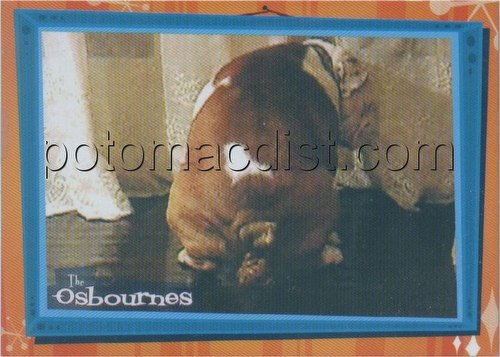Osbournes Trading Cards Case Card [#CL]