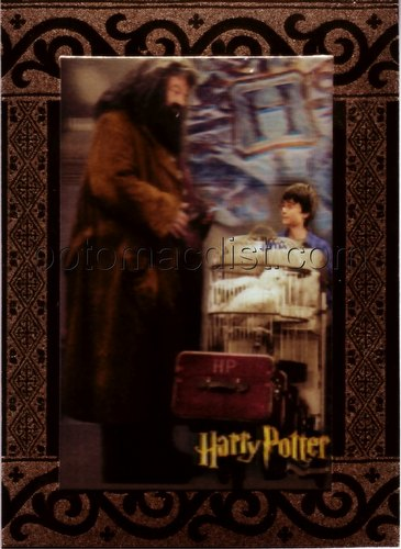 The World of Harry Potter in 3-D Case Card [#CT2]