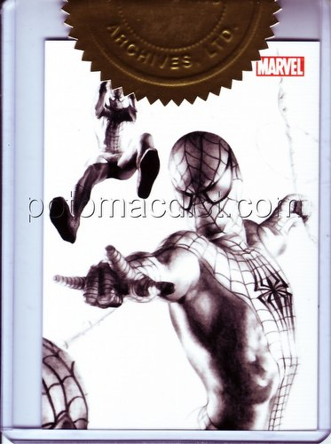 Spiderman (Spider-Man) Archives Trading Cards Case Topper Card (228/350) [#CT3]